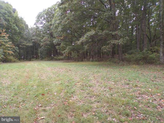 19114 Middle Ridge Rd, RAWLINGS, MD 21557 (#MDAL135490) :: The Redux Group