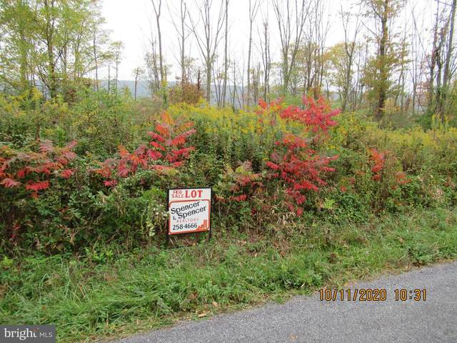 410 Mountain Road, NEWVILLE, PA 17241 (#PACB128786) :: The Joy Daniels Real Estate Group