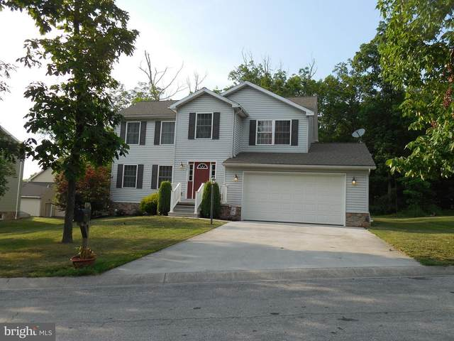 240 Twin Lakes Drive, GETTYSBURG, PA 17325 (#PAAD113586) :: The Joy Daniels Real Estate Group