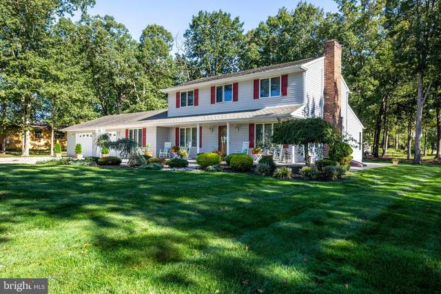 2315 Venezia Avenue, VINELAND, NJ 08361 (MLS #NJCB129344) :: The Dekanski Home Selling Team