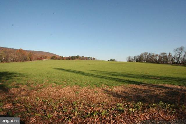 Lot 1E1 Tangletwig 7.7 Acres, PURCELLVILLE, VA 20132 (#VALO423526) :: LoCoMusings