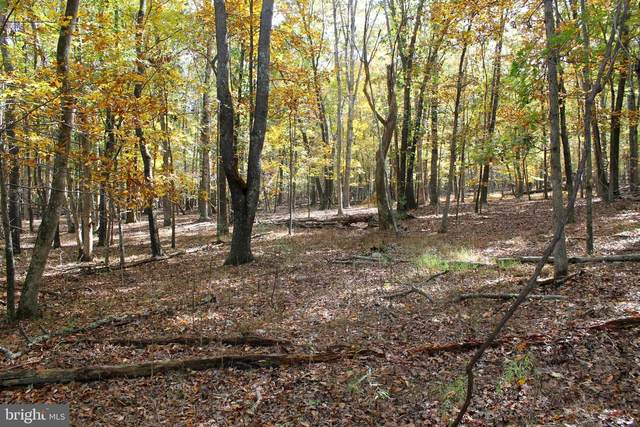 Lot 1 Greenpoint Road, LEVELS, WV 25431 (#WVHS114816) :: LoCoMusings