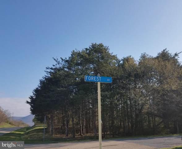 TBD Forest Drive, STANLEY, VA 22851 (#VAPA105664) :: LoCoMusings