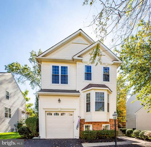 43449 Quentin Street, CHANTILLY, VA 20152 (#VALO423574) :: The Redux Group