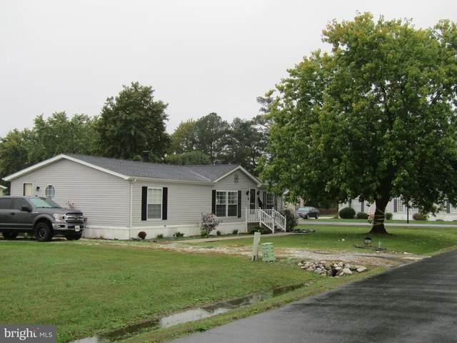 3901 Heritage Way, EAST NEW MARKET, MD 21631 (#MDDO126230) :: The Rhonda Frick Team