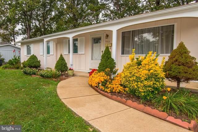 6608 Bowie Drive, SPRINGFIELD, VA 22150 (#VAFX1161268) :: Tessier Real Estate