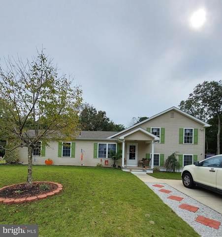 4289 Sally Dr, VINELAND, NJ 08361 (MLS #NJCB129400) :: The Dekanski Home Selling Team