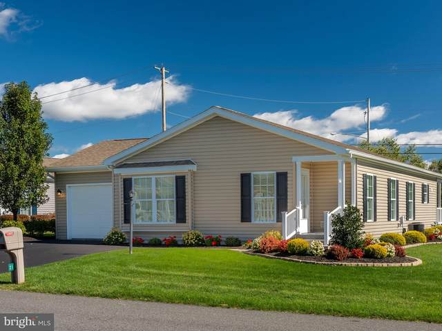 21 Wren Drive, BECHTELSVILLE, PA 19505 (#PABK365502) :: Linda Dale Real Estate Experts