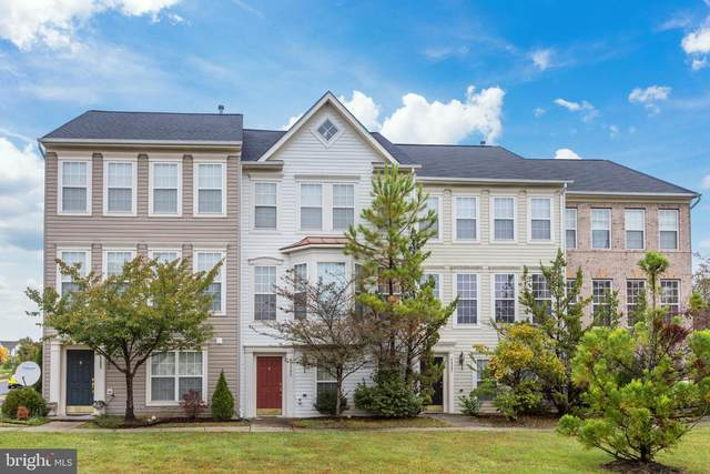 44285 Shehawken Terrace, ASHBURN, VA 20147 (#VALO423622) :: AJ Team Realty
