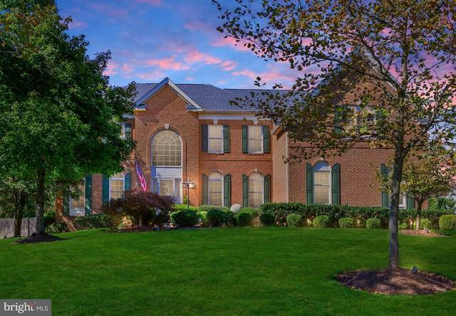 23393 Summerstown Place, STERLING, VA 20166 (#VALO423638) :: The Redux Group