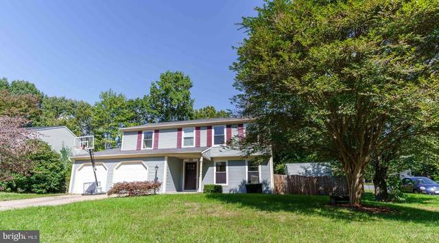 4562 Rincon Place, DUMFRIES, VA 22025 (#VAPW507062) :: The Sky Group