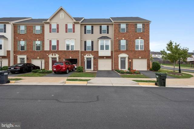 22874 Chestnut Oak Terrace, STERLING, VA 20166 (#VALO423682) :: Jennifer Mack Properties