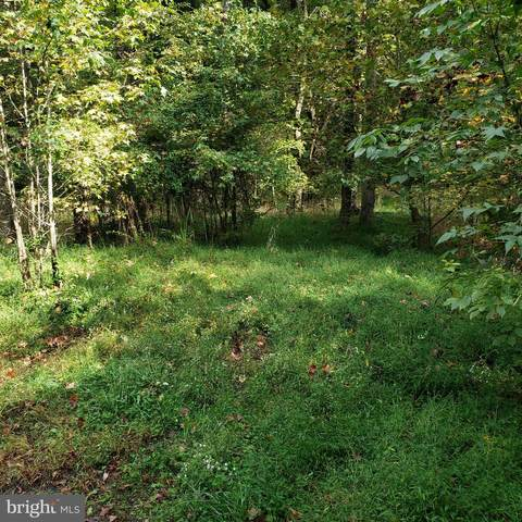 Lot 76 Jasmine Trail, LORTON, VA 22079 (#VAFX1161596) :: The Piano Home Group