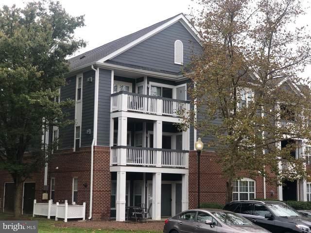 20313 Beechwood Terrace #200, ASHBURN, VA 20147 (#VALO423706) :: The Redux Group