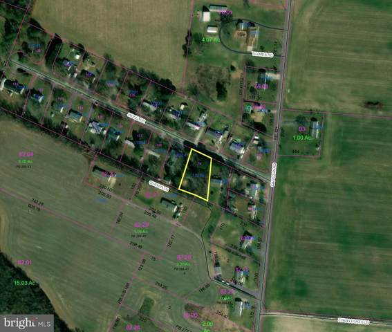 17336 Isdell Road, MILFORD, DE 19963 (#DESU171354) :: LoCoMusings