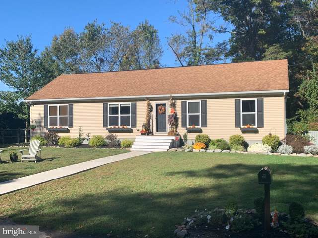 21 Elder Place, PENNSVILLE, NJ 08070 (#NJSA139726) :: Ramus Realty Group