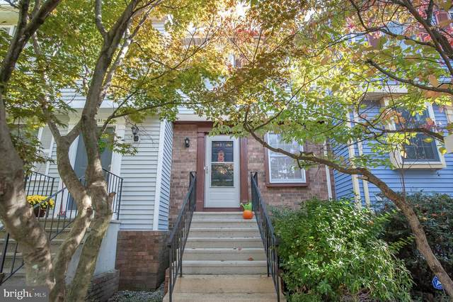5353 Harbor Court Drive, ALEXANDRIA, VA 22315 (#VAFX1161702) :: Ultimate Selling Team