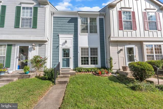 7115 Strawn Court, ALEXANDRIA, VA 22306 (#VAFX1161810) :: SURE Sales Group