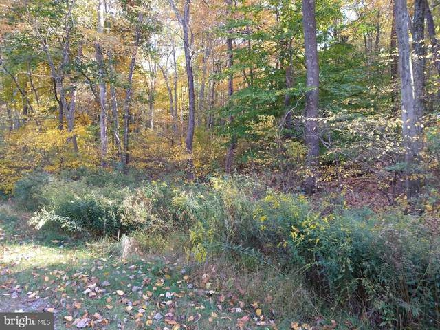 Lot 6 Old Limekiln Lane, NEWPORT, PA 17074 (#PAPY102746) :: TeamPete Realty Services, Inc