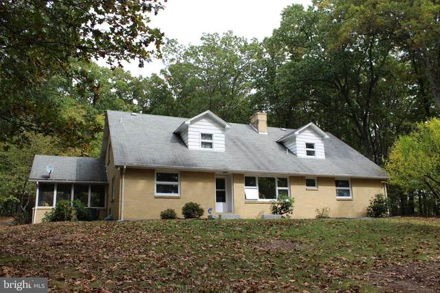 14001 Pinto Hill Drive, PINTO, MD 21556 (#MDAL135528) :: Bruce & Tanya and Associates