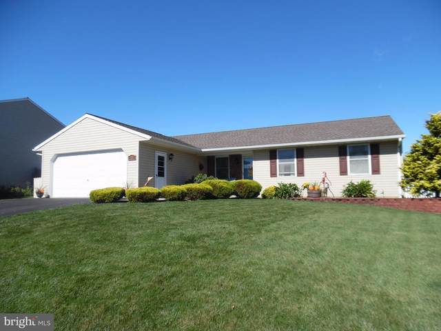 28 Meadow Drive, NEWMANSTOWN, PA 17073 (#PALN116300) :: REMAX Horizons