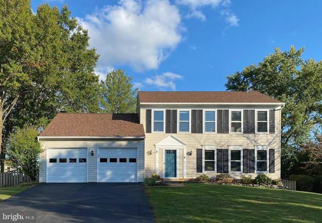 10162 Yorktown Way, GREAT FALLS, VA 22066 (#VALO423862) :: A Magnolia Home Team