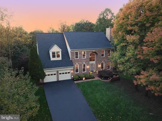21201 Lonetree Court, STERLING, VA 20165 (#VALO423882) :: Blackwell Real Estate