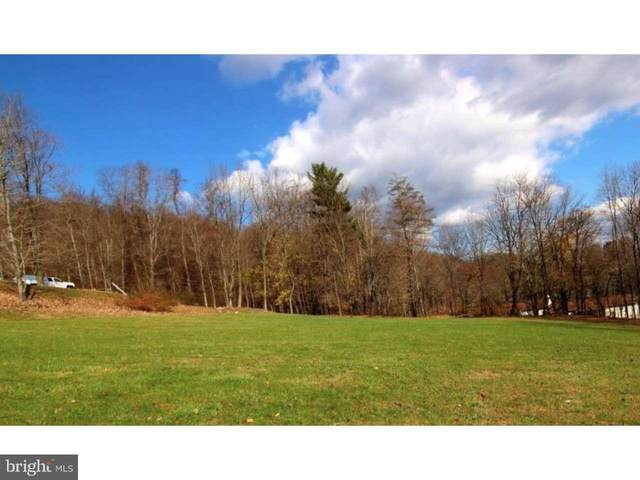0 Eastwood Lane, POTTSVILLE, PA 17901 (MLS #PASK132844) :: Kiliszek Real Estate Experts
