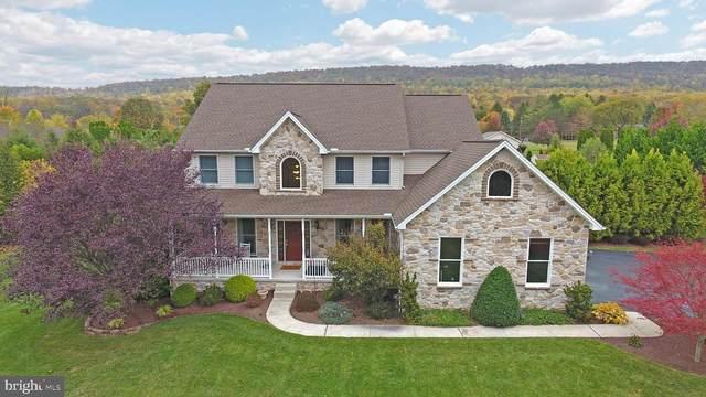 1590 Stoney Mountain Way, DAUPHIN, PA 17018 (#PADA126840) :: The Craig Hartranft Team, Berkshire Hathaway Homesale Realty