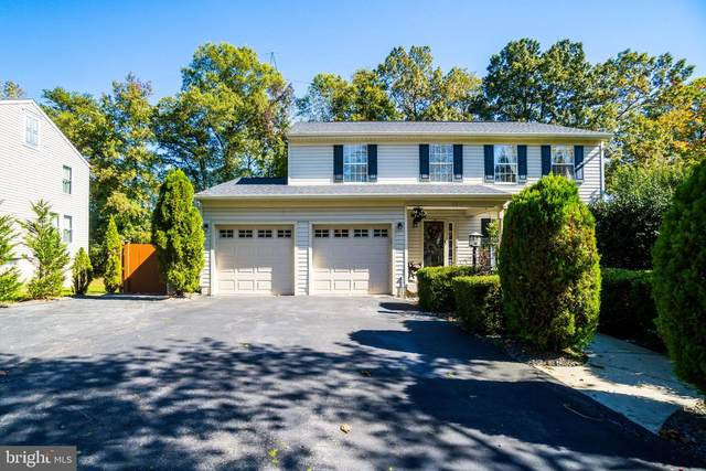 8213 Climbing Fern Court, BOWIE, MD 20715 (#MDPG584886) :: Revol Real Estate