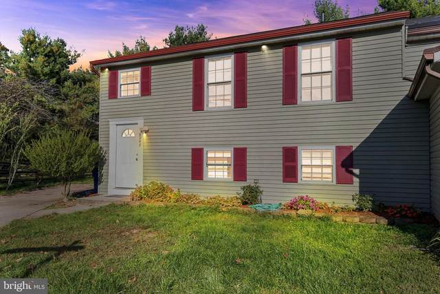 6242 Harvest Rise Court, COLUMBIA, MD 21045 (#MDHW286718) :: AJ Team Realty