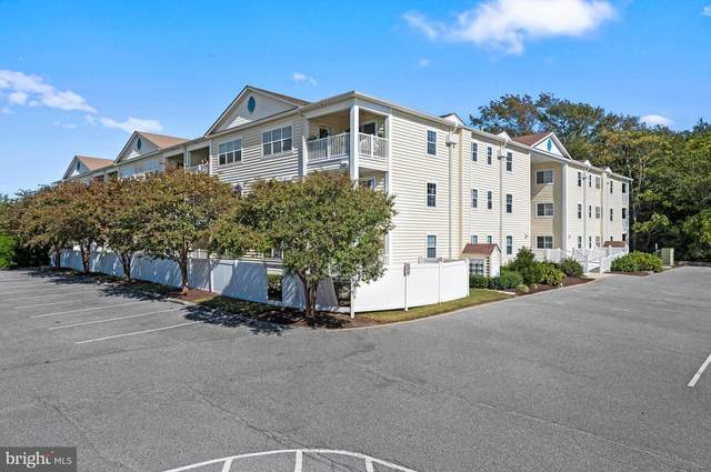 30413 Cedar Neck Road #211, OCEAN VIEW, DE 19970 (#DESU171536) :: Dawn Wolf Team