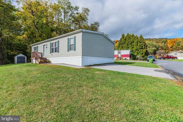 34 Liam Lane, CARLISLE, PA 17015 (#PACB129014) :: The Joy Daniels Real Estate Group
