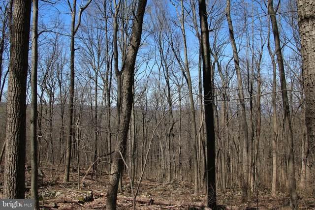 Forest Drive, FRONT ROYAL, VA 22630 (#VAWR141792) :: A Magnolia Home Team