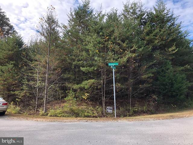 Lot 29 Outer Banks Lane, BUMPASS, VA 23024 (#VASP226142) :: SP Home Team