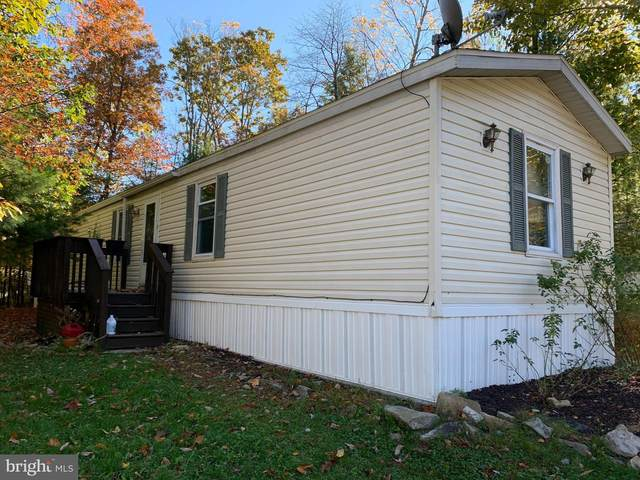131 Angel Drive, NEW RINGGOLD, PA 17960 (#PASK132874) :: TeamPete Realty Services, Inc