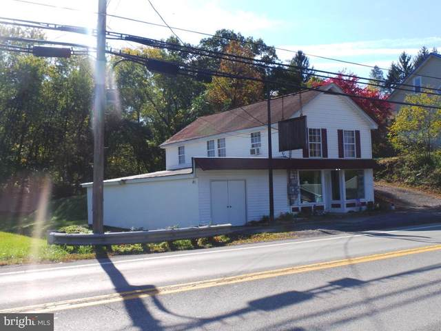 801 South Washington Street, BERKELEY SPRINGS, WV 25411 (#WVMO117626) :: Hill Crest Realty