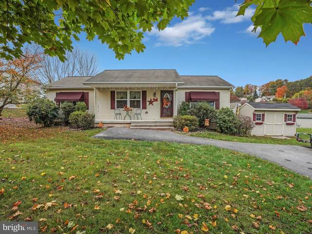 1662 Wampum Drive, AUBURN, PA 17922 (#PASK132878) :: Bob Lucido Team of Keller Williams Integrity