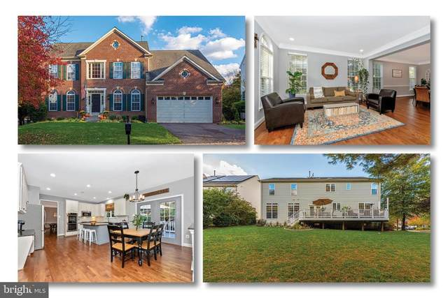 3840 Triton Lane, FREDERICK, MD 21704 (#MDFR272508) :: The Redux Group