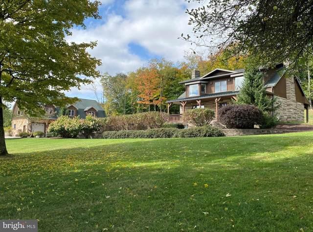 1857 Chestnut Ridge Road, GRANTSVILLE, MD 21536 (#MDGA133820) :: LoCoMusings