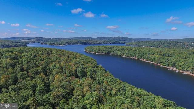LOT 20 North Shore West Smith Pointe Rd (Thousand Acres), SWANTON, MD 21561 (#MDGA133822) :: Better Homes Realty Signature Properties