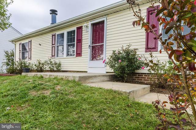 31 Snipe, MARTINSBURG, WV 25405 (#WVBE181274) :: SURE Sales Group
