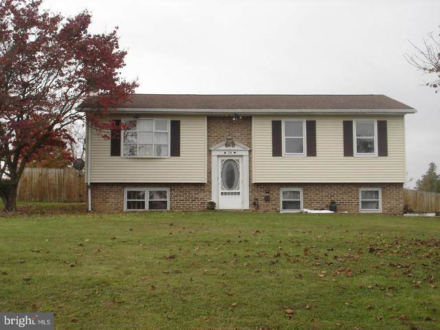 38 Apple Lane, ARENDTSVILLE, PA 17303 (#PAAD113708) :: The Jim Powers Team