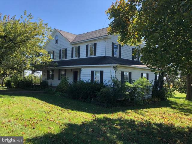 3600 Delta Road, AIRVILLE, PA 17302 (#PAYK147648) :: The Jim Powers Team