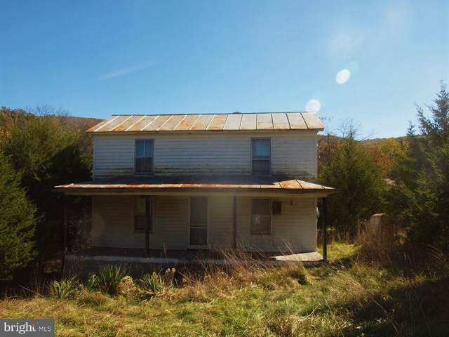 4606 South Mill Creek Road, UPPER TRACT, WV 26866 (#WVPT101576) :: Bruce & Tanya and Associates
