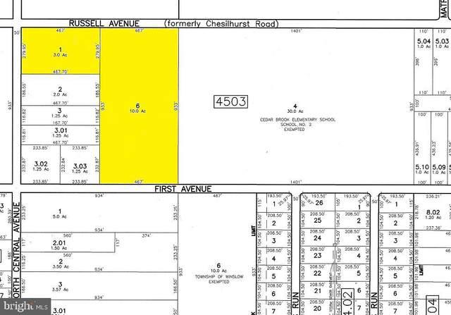 0 1ST Avenue, SICKLERVILLE, NJ 08081 (#NJCD405486) :: Erik Hoferer & Associates