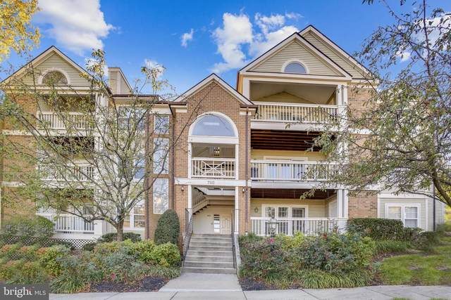 7512 Ashby Lane M, ALEXANDRIA, VA 22315 (#VAFX1162616) :: Arlington Realty, Inc.