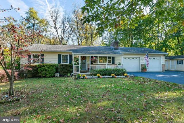 661 Gulden Road, BLANDON, PA 19510 (#PABK365874) :: Linda Dale Real Estate Experts