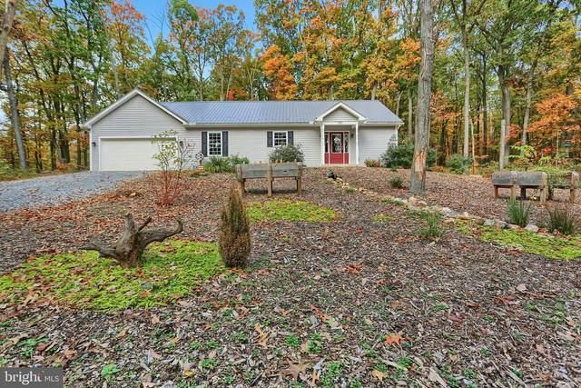 107 Old Sawmill Drive, NEWBURG, PA 17240 (#PACB129074) :: Century 21 Home Advisors