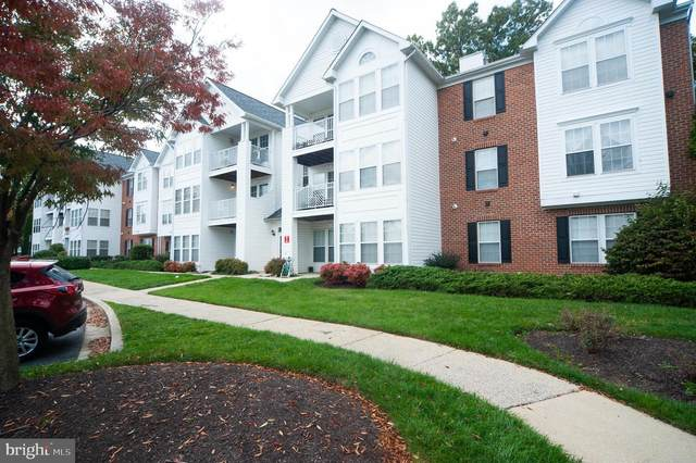 2406 Autumn Harvest Court #202, ODENTON, MD 21113 (#MDAA450374) :: The Redux Group